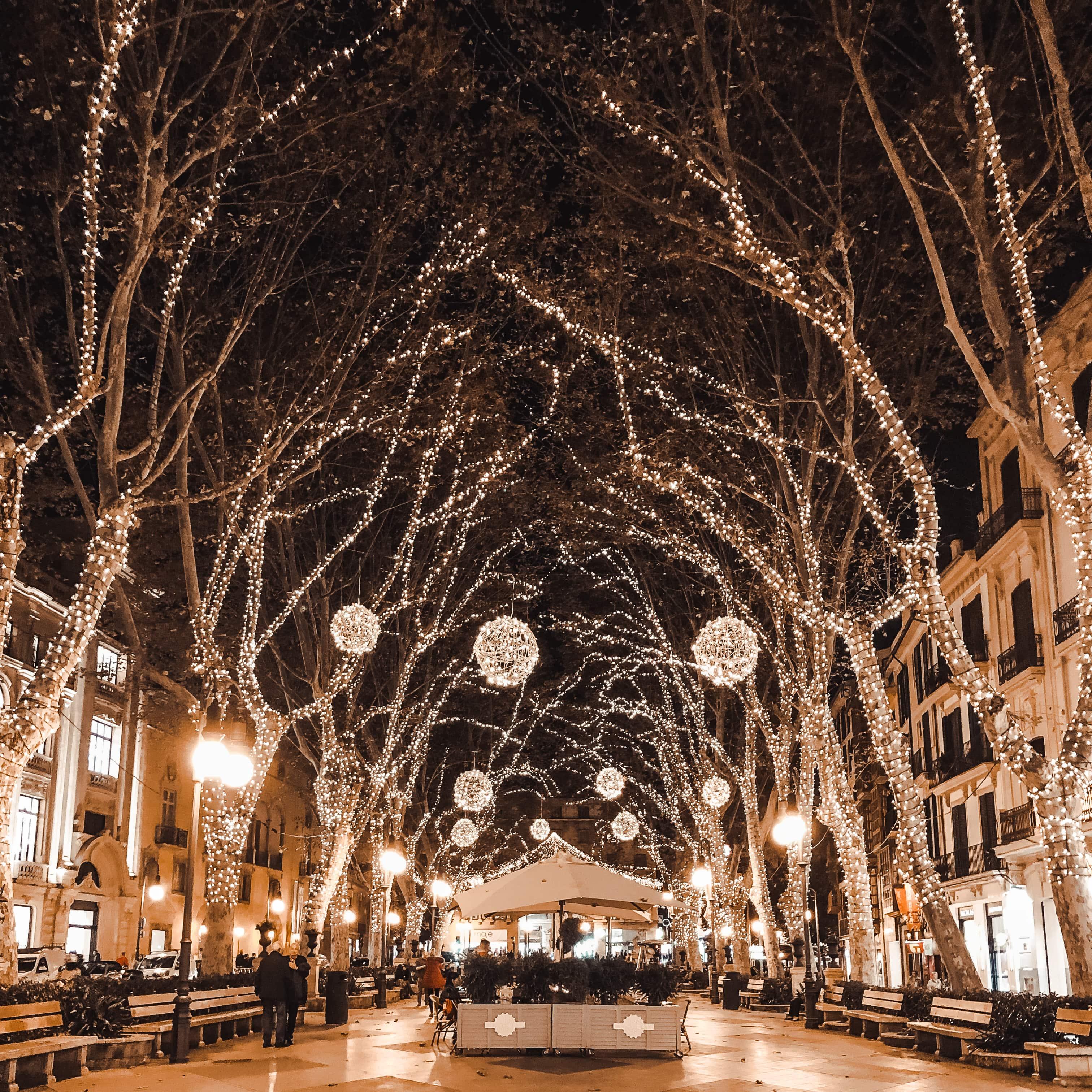 Christmas lights on Passeig Des Born in Palma de Mallorca
