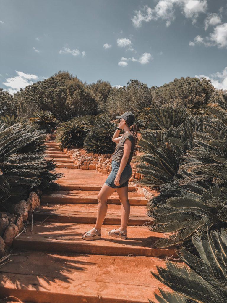 Cactus garden in Mallorca - Botanicactus