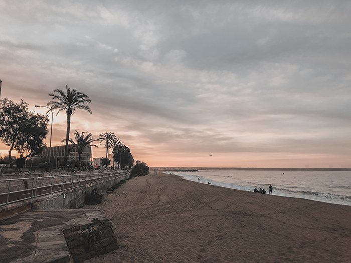 sunrise beach palmtrees Palma de Mallorca
