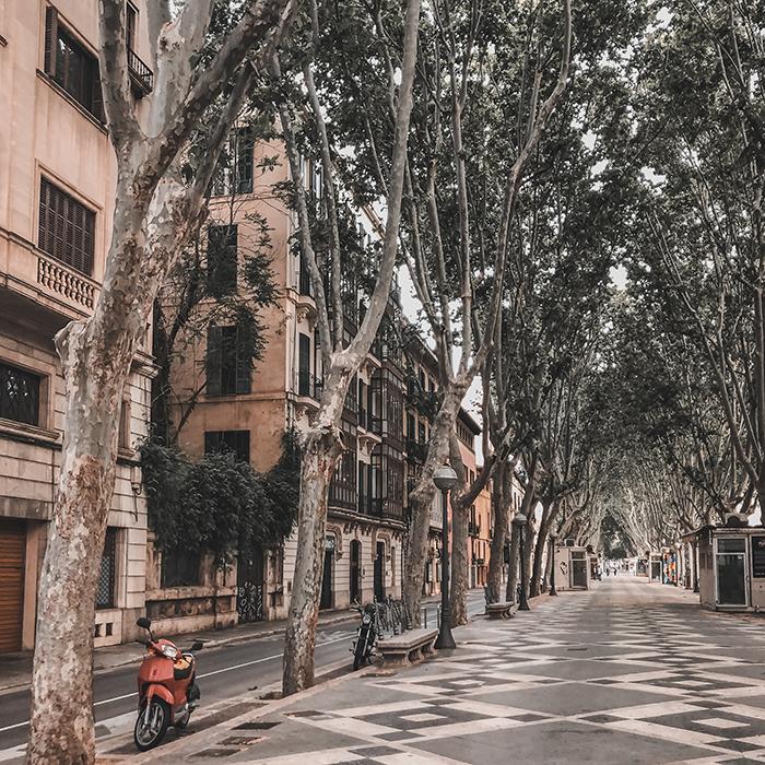 La rambla Palma de Mallorca empty